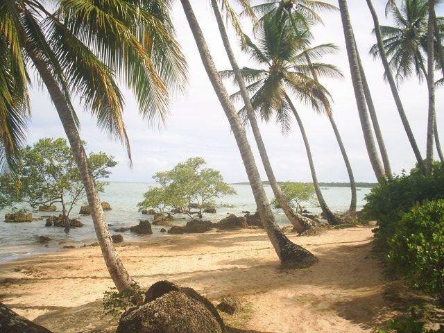 Ilha de Boipeba/ BA - BR