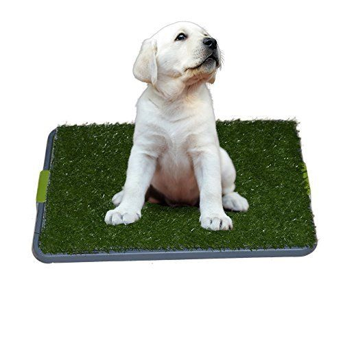 Sonnyridge Easy Dog Potty Training Made With Synthetic Grass 3