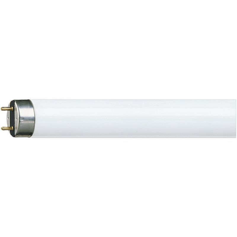 Neon Tube Lamp T8 18w 60cm Warm Light 1883ng Philips Led Tubes