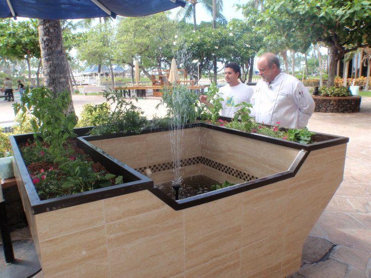 A Unique Prototype Aquaponics System At The 2009 Taste Of 400 x 300