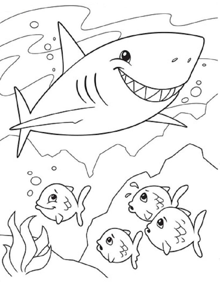 Crayola Coloring Pages Shark Dibujo De Tiburon Caricaturas Para