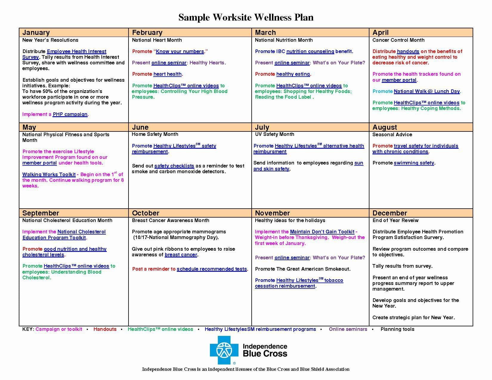 Wellness Recovery Action Plan Template Beautiful 10 Wellness Recovery Action Plan Examples Pdf Wellness Recovery Action Plan Wellness Plan Action Plan Template Personal wellness plan worksheet