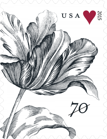 Usps Wedding Stamps.Vintage Tulip 2015 Forever Stamp Preview Usps Stamps