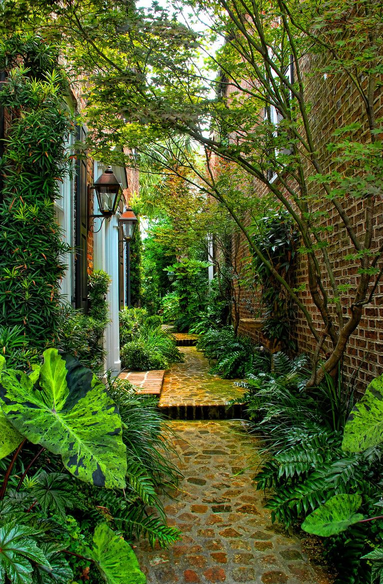 Great textures love the topical plants no grade changes for Tropical courtyard garden design
