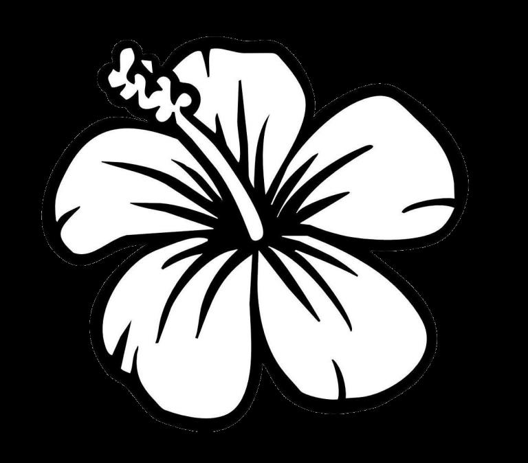 flowerclipartblackandwhite Easy flower drawings