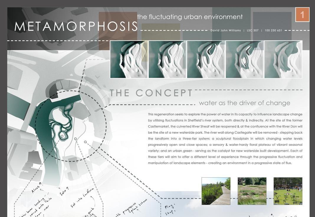 David Williams Integrated Design Project 2013