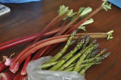 Finally, a strawberry rhubarb recipe to try!