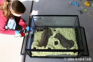 "Naturalistic Vivarium- Great Stuff ""How To""... LOTS of pics"