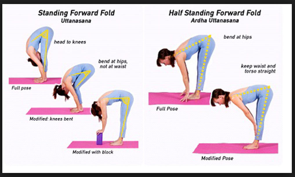 34+ Standing forward bend benefits ideas