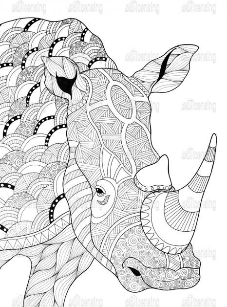 Realista de la fauna 23   arte Licencias   Animales 13   Pinterest ...