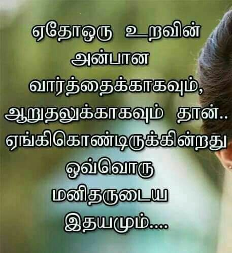 Yuravu Feelings Quotes Life Quotes Tamil Love Quotes