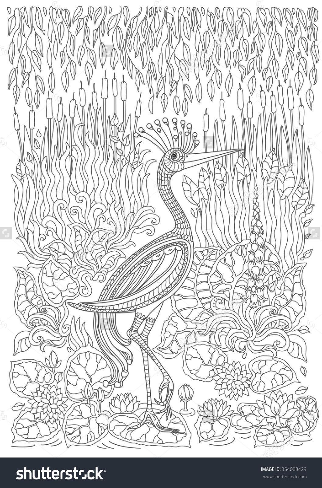 Pin de Rosa María en Pajaros 03 | Pinterest | Terapia, Pájaro y Color
