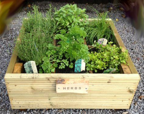 Win a planter plus garden gift ideas for Mothers Day | Mother\'s Day ...