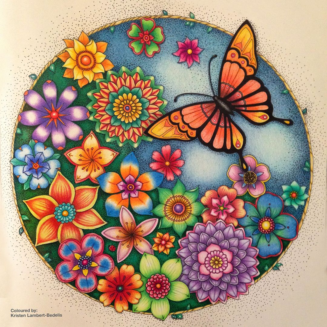 Tropical Butterfly From Magical Jungle Finished Just Had A Blissful Day Colouring An Johanna Basford Coloring Basford Coloring Johanna Basford Coloring Book