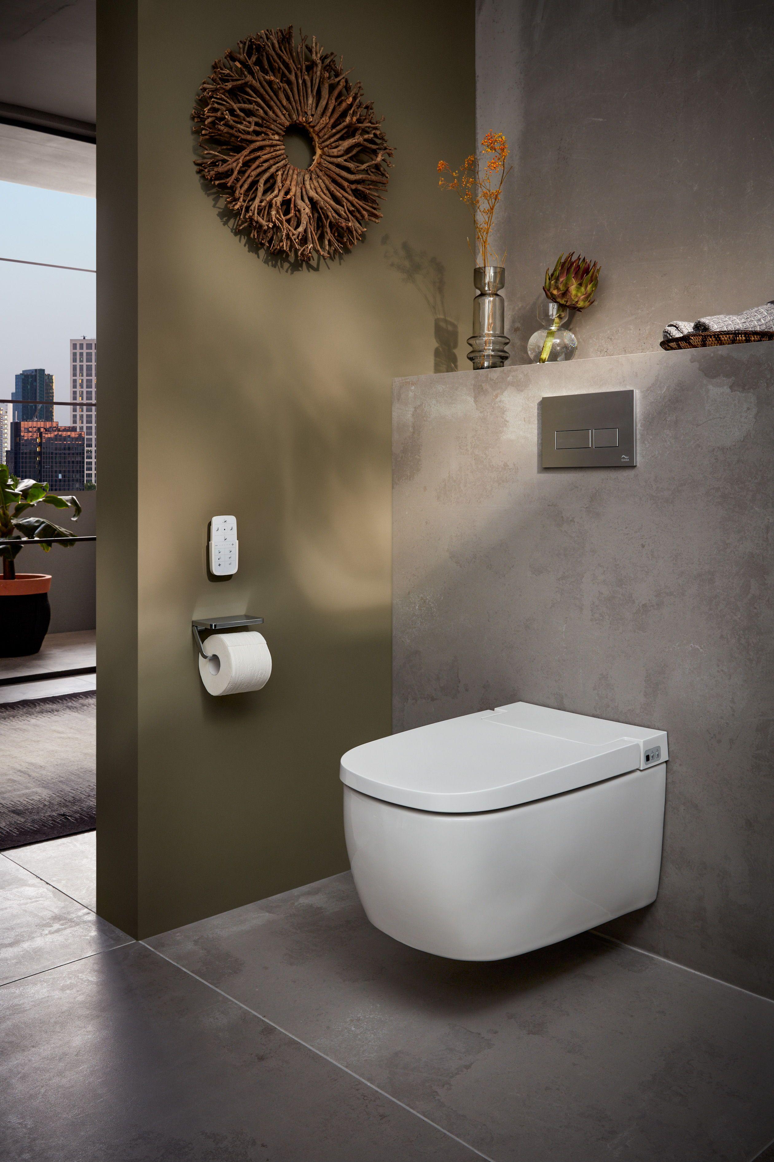 Moderne Toilette Furs Bad In 2020 Moderne Toilette Wc Mit Dusche Bad Renovieren