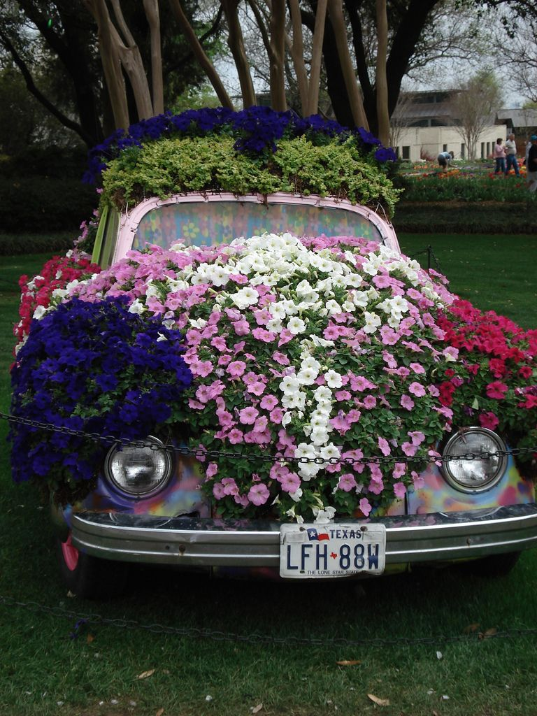 Flower Car - Dallas Arboretum and Botanical Garden, Texas | Garden ...