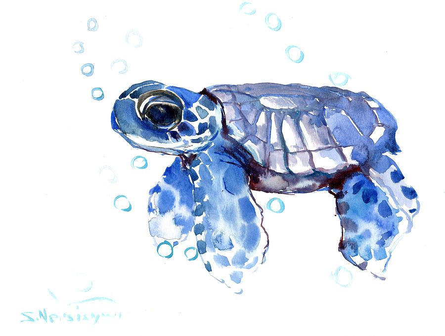 Baby Blue Sea Turtle Blue Framed Art Watercolor Paintings