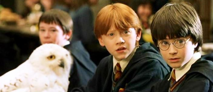Hedwig Seamus Ron And Harry Potter 1991 Jpg 703 304 Harry Potter Owl Name Harry Potter Owl Harry Potter