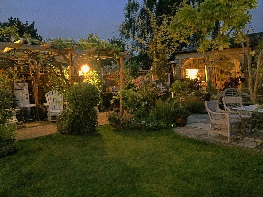 Dusk is a lovely time in the garden and actually it\'s not that cold ...