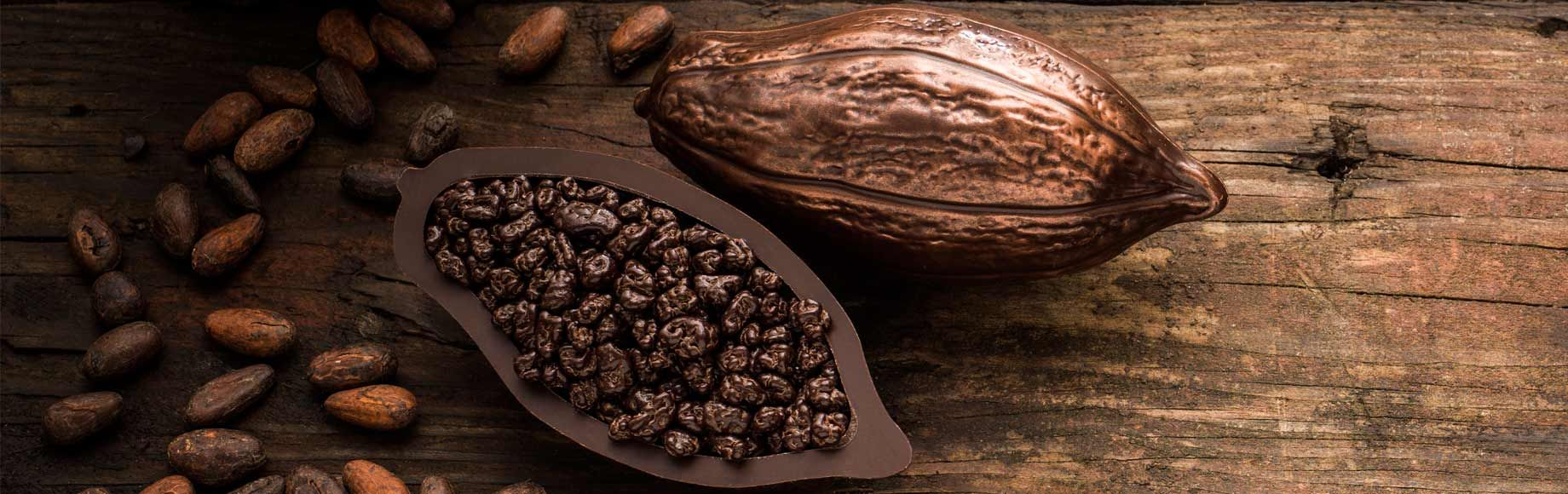 From Cocoa Bean to Chocolate Pod