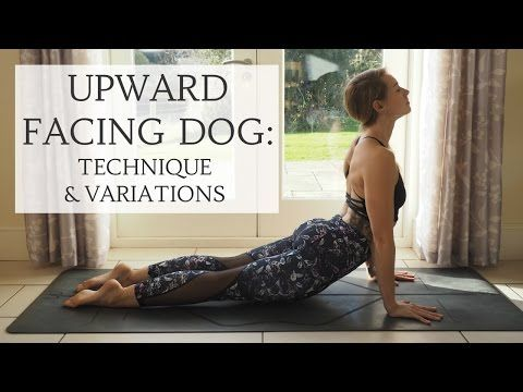 yoganuary 7  upward facing dog technique  variations
