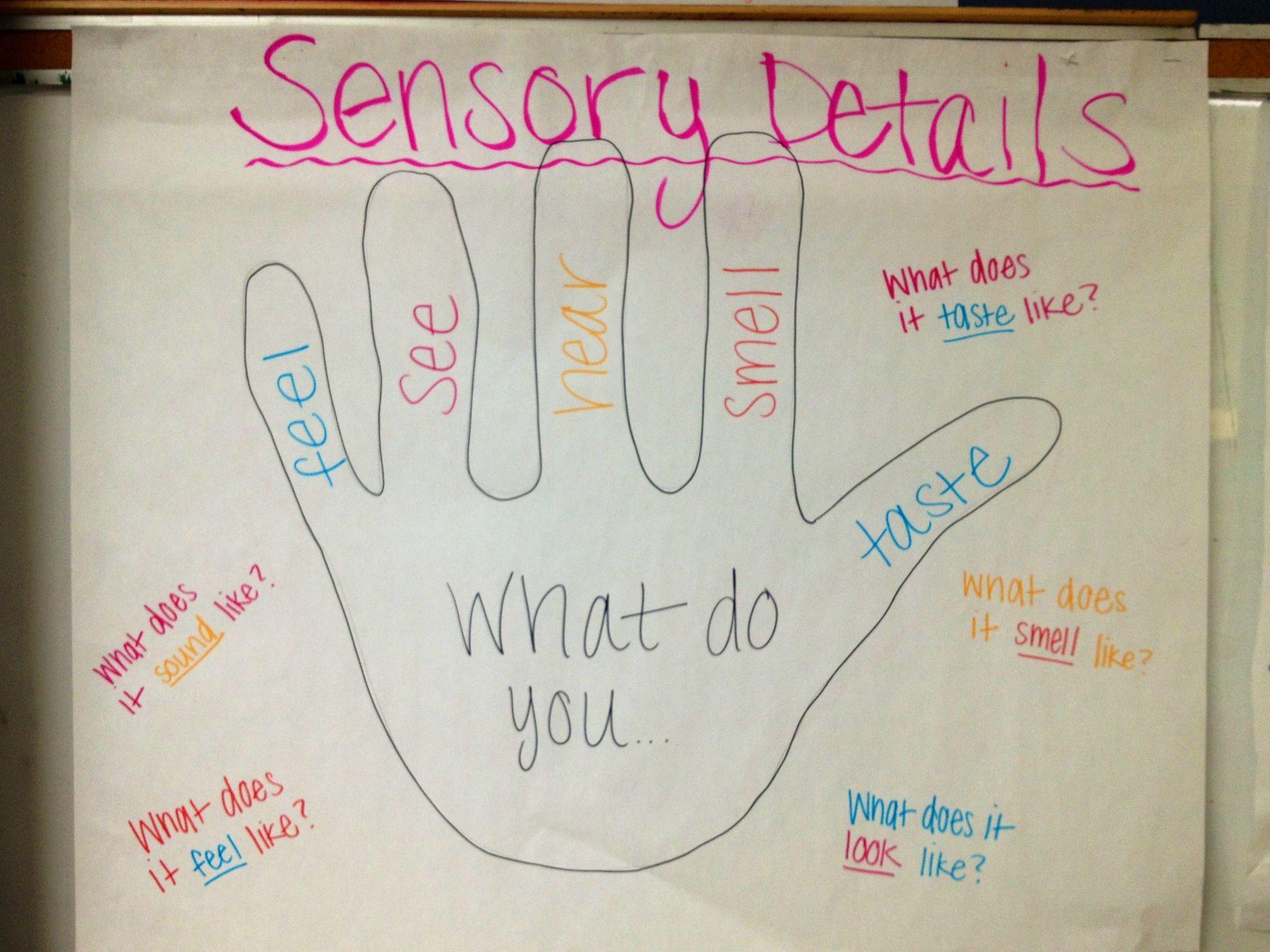 Sensory Details Anchor Chart