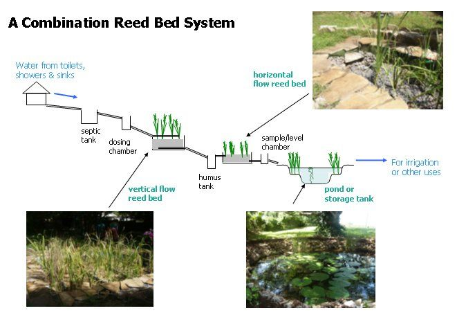 Green Stepped Reed Bed System Eco Friendly Ideas Go Green Pinterest