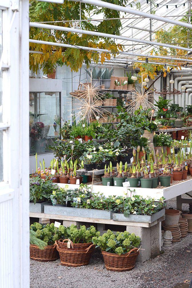 garden girl återförsäljare stockholm