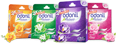 Odonil Air Fresheners Are Available In 'block' Formatsodonil Extraordinary Bathroom Fresheners Design Ideas