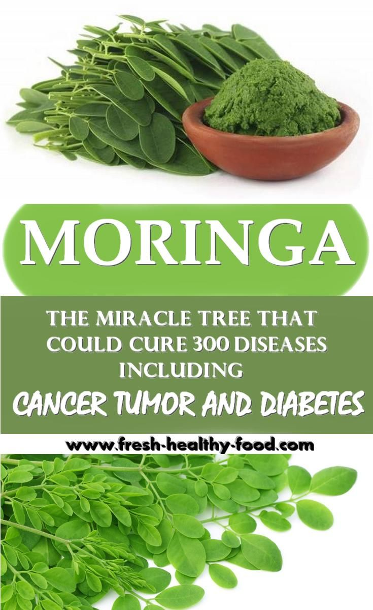 Moringa, the miracle tree comes from Himalayan Mountains, India ...