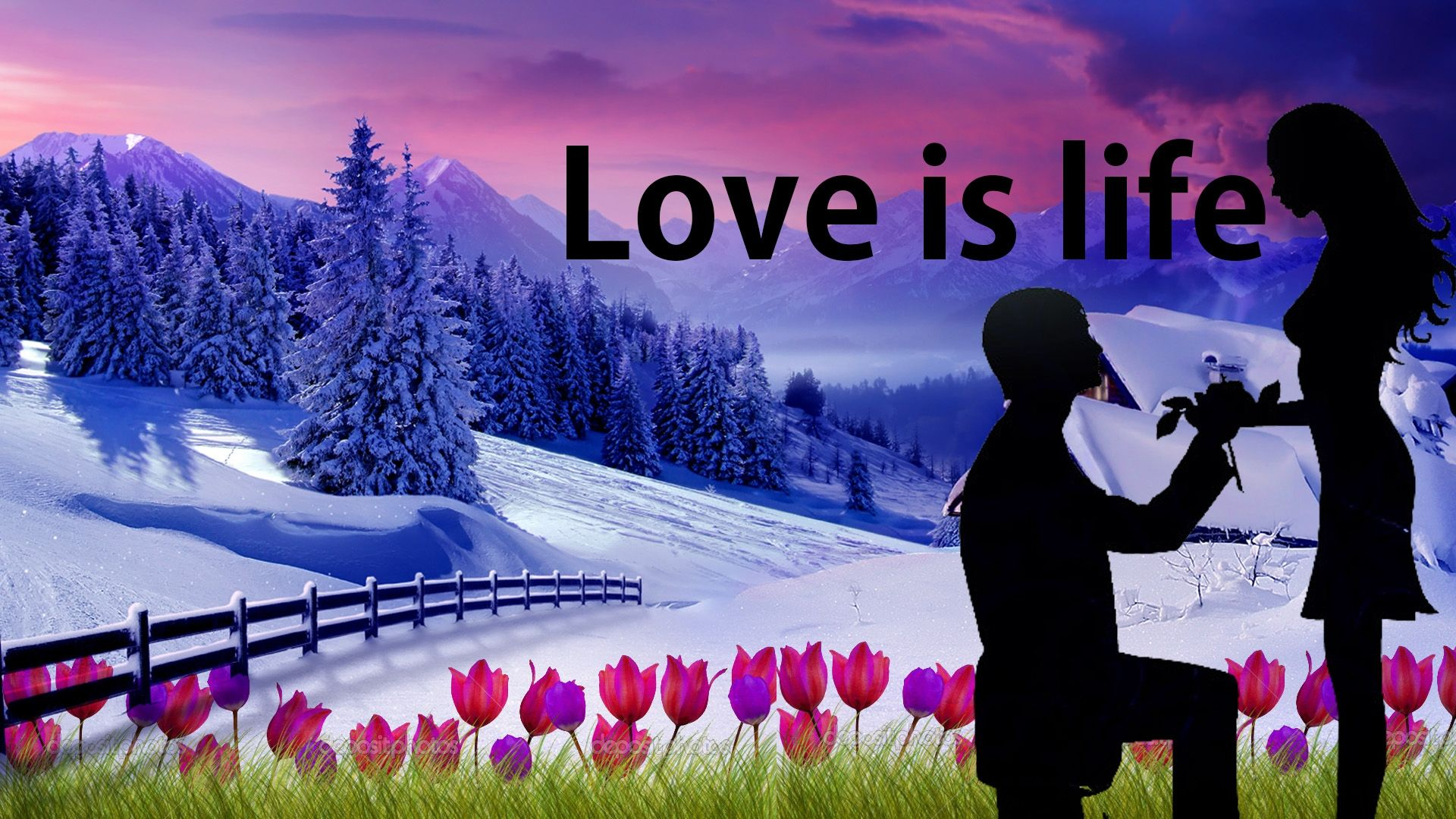 download wallpaper of love is life hd - download wallpaper of love