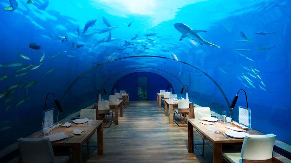 httpwwwbingcomimagessearchqUnderwater Hotel Dubai United