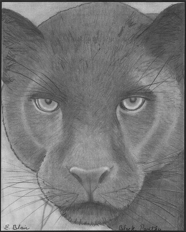 Panther Face Drawing : panther, drawing, Black, Panther, Drawing, Google-søk, Drawing,, Tattoo,, Tattoo