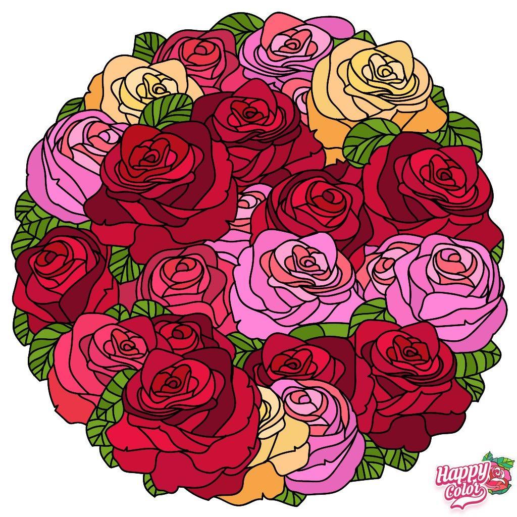 раскраска розы | Раскраски, Розы, Графика