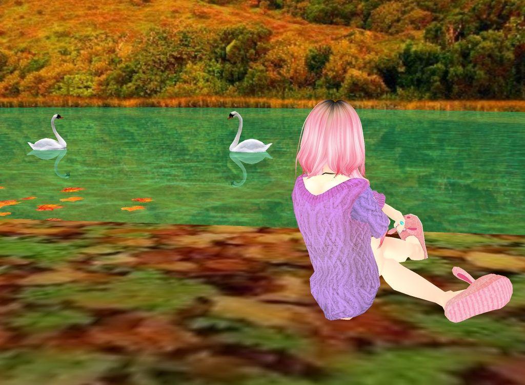 Swan Lake!<3