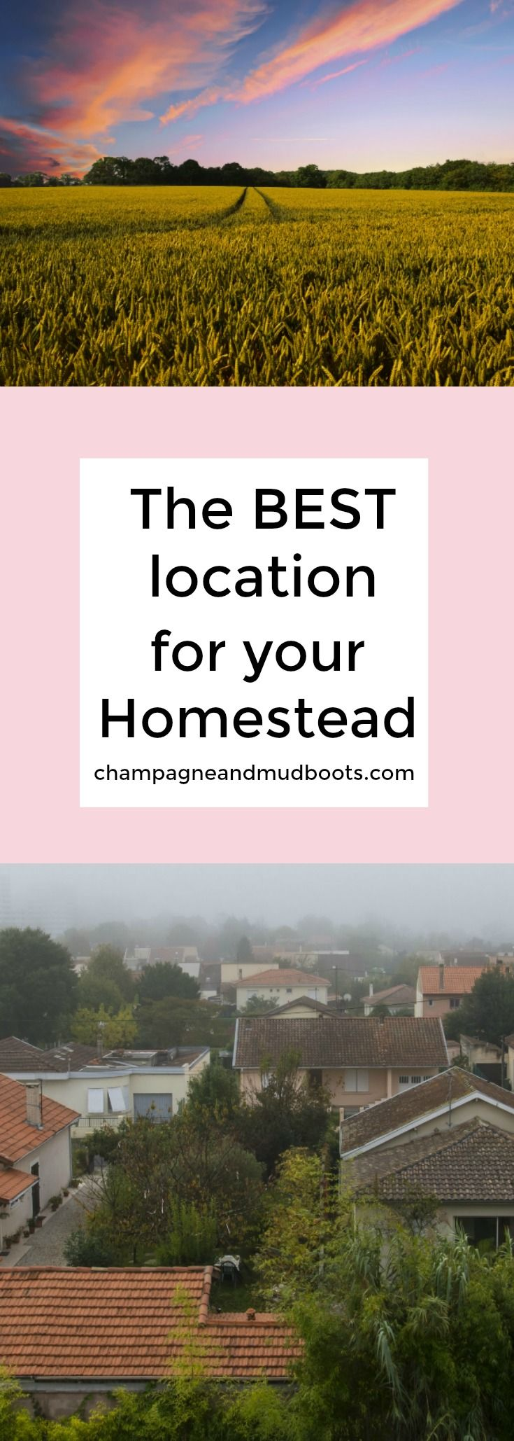 Top 10 Reasons to Have a Homestead in the Suburban Rural