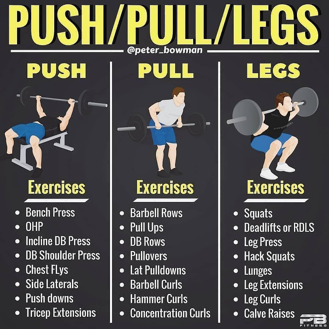 Follow Me Topgymtips For Daily Nutritional Training Advice Push Pull Legs By Peter Bow Push Pull Workout Weight Training Workouts Push Pull Legs Workout