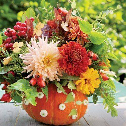 composione di fiori  nella zucca