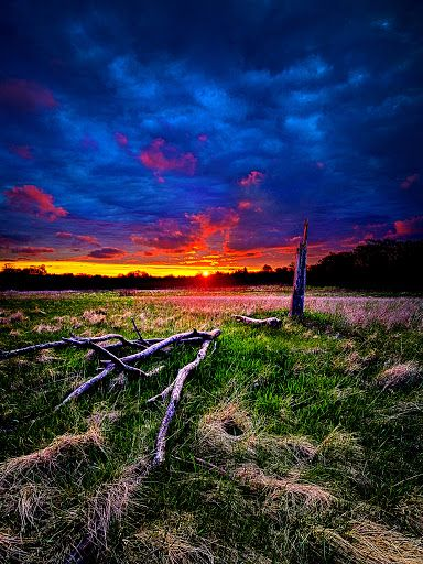 Firewood by Phil Koch - Sunset in Wisconsin Click on the image to enlarge.