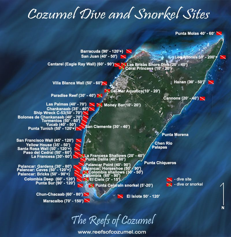 Cozumel Scuba Diving | Cozumel Snorkeling | Watersports in ...