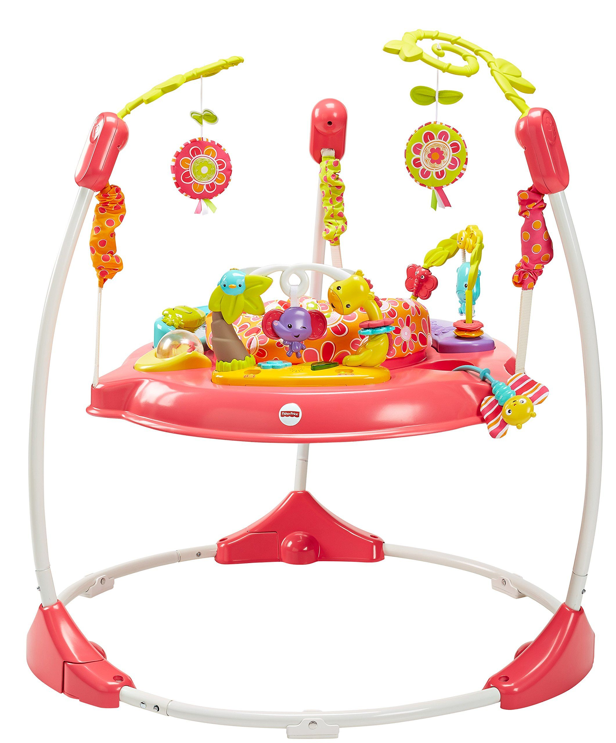 8ca6b79f4 FisherPrice Pink Petals Jumperoo     Check this awesome product by ...