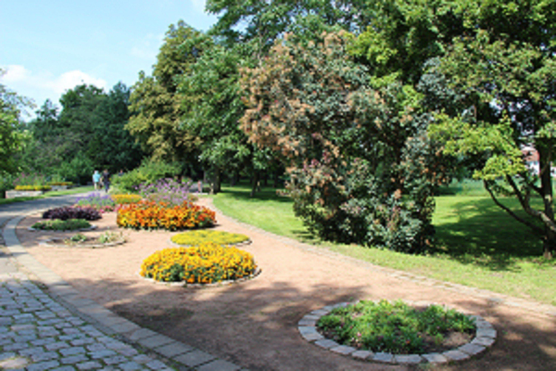 Botanischer Garten Frankfurt Oder Seenland Oder Spree Frankfurt Durchgehend Botanischer Garten Frankfurt Oder Designer Verwenden Garden Sidewalk Structures