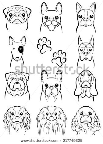 Dog line drawing stock vector