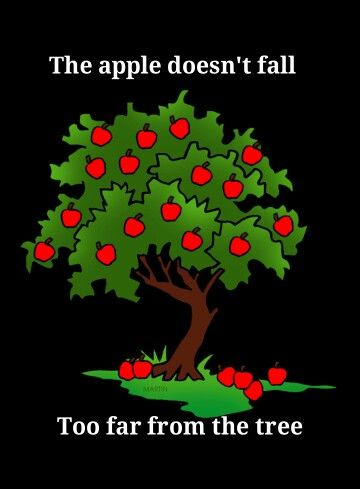 Idioms: the apple doesn't fall far from the tree -- the best things in life are free