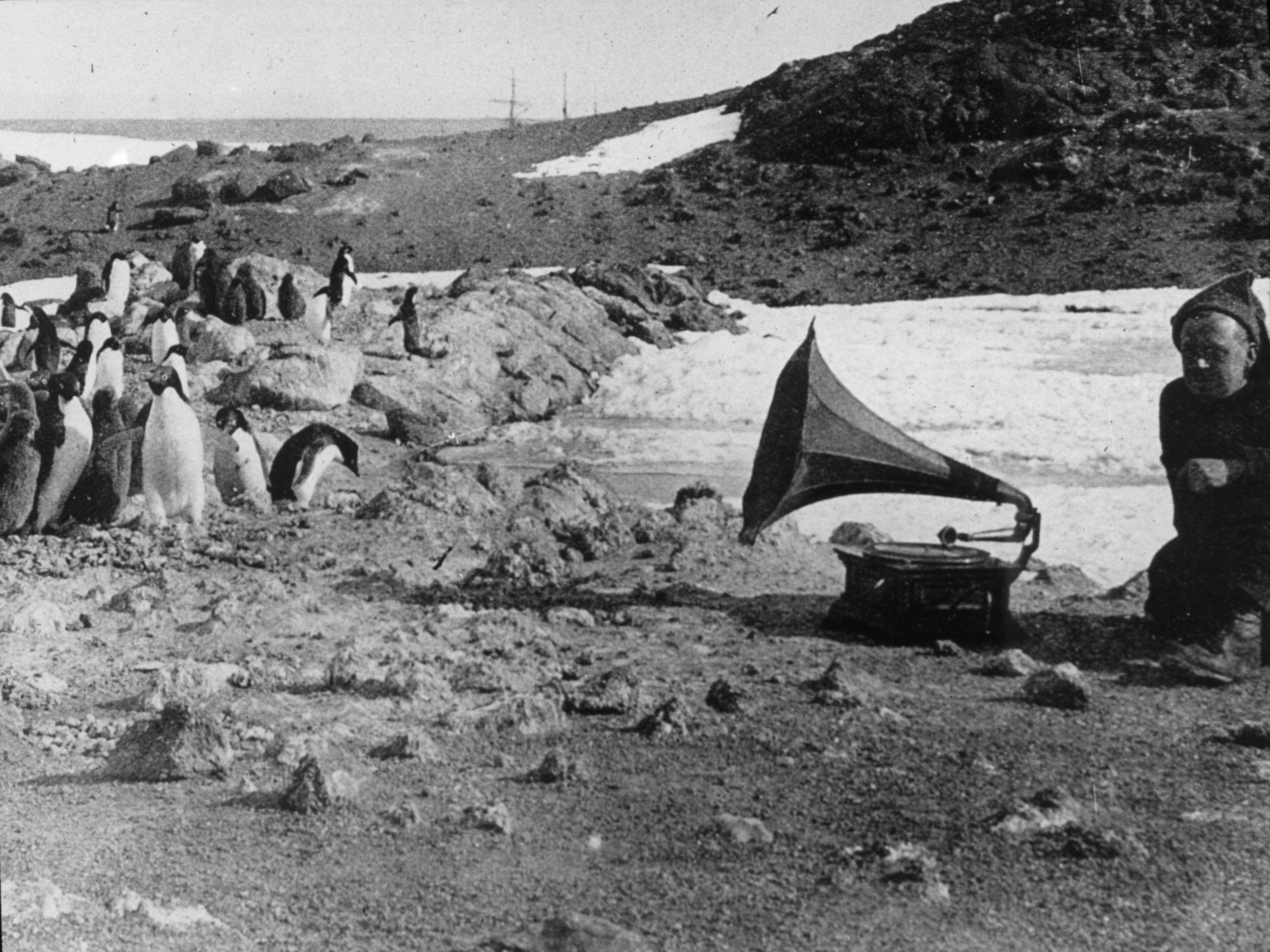 Rogue Waves Corpus Optima Shackleton S Voyage