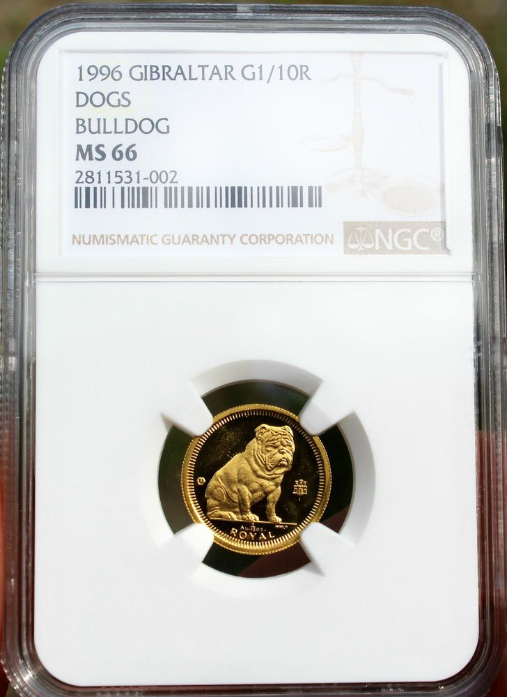 1996 Gibraltar Gold Bulldog Coin Ngc Ms66 Gem Uncirculated Pobjoy Mint 1 10 Oz Rare Gold Coins Ngc Ebay Finds