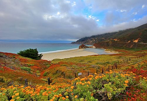 Pacific Coast Highway and Little Sur River by Dave Toussaint