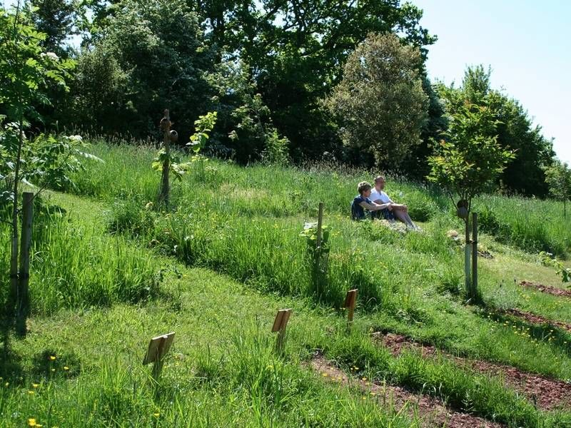 Worcestershire natural burial - Westall Park