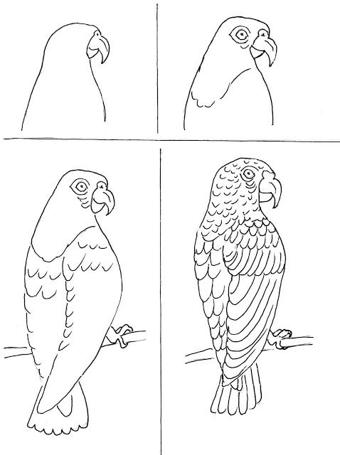 Parrot tutorial art class ideas