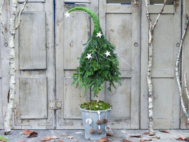 So machst du einen Tannenbaum mit Zipfelmütze aus Naturmaterial selbst